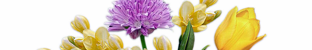 Virtual Flowers – Signup Now!