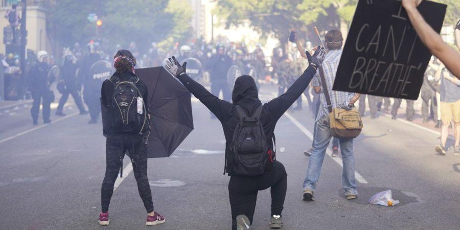 Lions Krav Maga Self Defense for Civil Disobedience