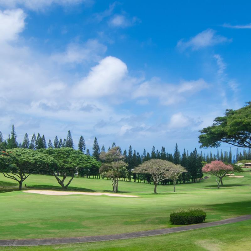 Kapalua Golf Villas Information