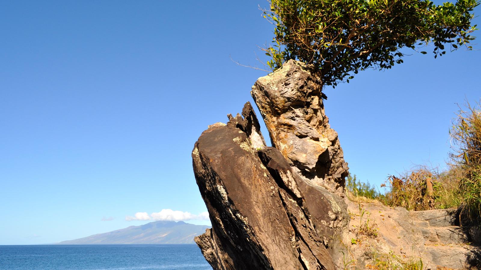 The Kapalua Coastal Trail