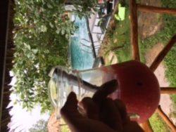 Watermelon juice :)