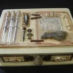 1anthropologybox