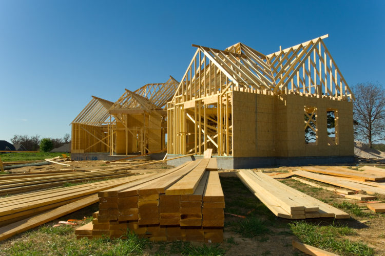 Make Sure Your Project is Built to Prevent Pests
