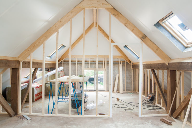 Could the Key to Pest Control Be a Renovation?