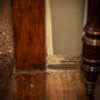 Understanding the Damage Caused by Termites