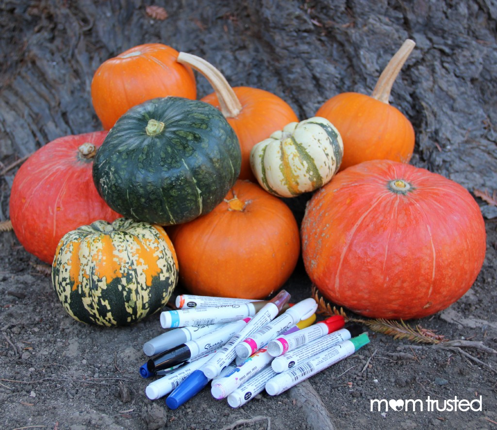 Paint Pen Pumpkins by Mom Trusted 6 wm