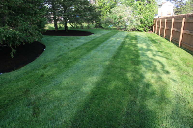 Give your property the professional care it deserves with landscape maintenance services.  Picture Lake Landscaping provides landscape maintenance services to Hamburg NY / Orchard Park NY