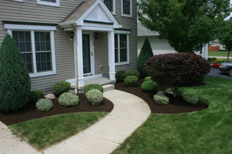 Crisp defined edging, detailed bush trimming, and smooth mulch installation give your property a well manicured look.