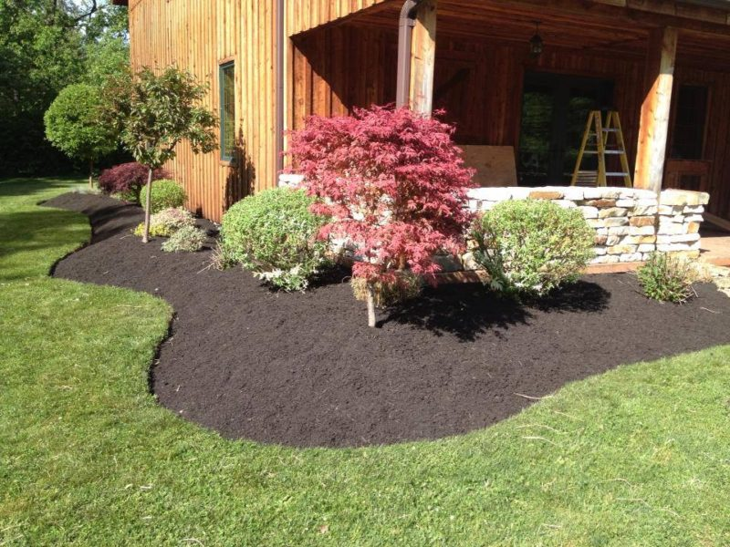 Professional landscaping services in Hamburg NY and Orchard Park NY.