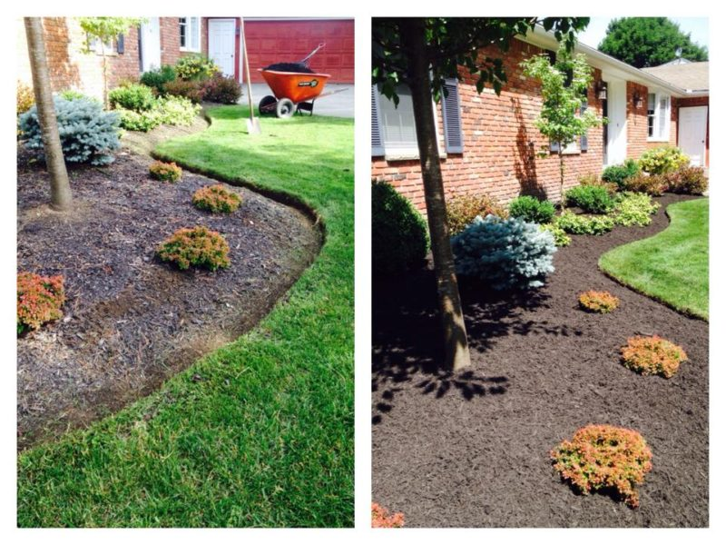Crisp edging and fresh mulch livens up any landscape.  Picture Lake Landscaping provides landscape maintenance services to Orchard Park, NY / Hamburg NY