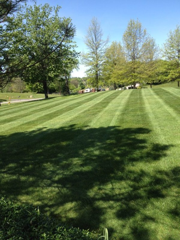 Professional lawn maintenance service provided to Hamburg NY and Orchard Park NY