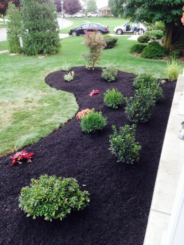 New Landscape Install