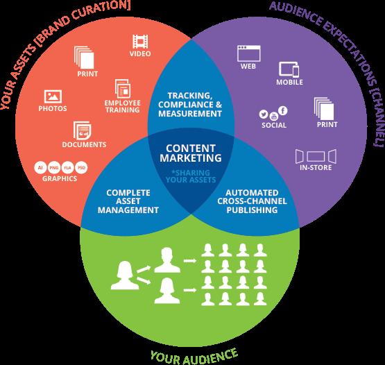 diagram for factors in field sales team management