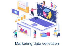 Marketing Data Collection Services