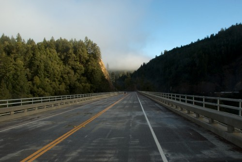 highway 101 near redwoods national park