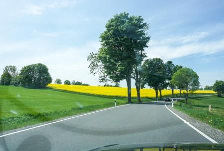 Landstrasse with rapeseed in full bloom.
