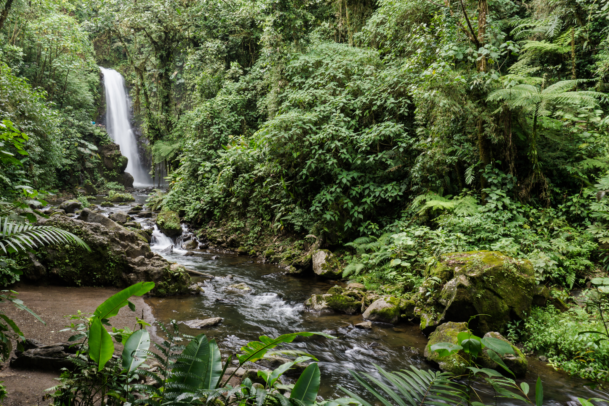 There are actually three waterfalls there in slow succession, so it's really just $20 per waterfall.