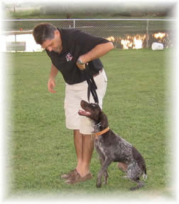 boarding school trainer with dog