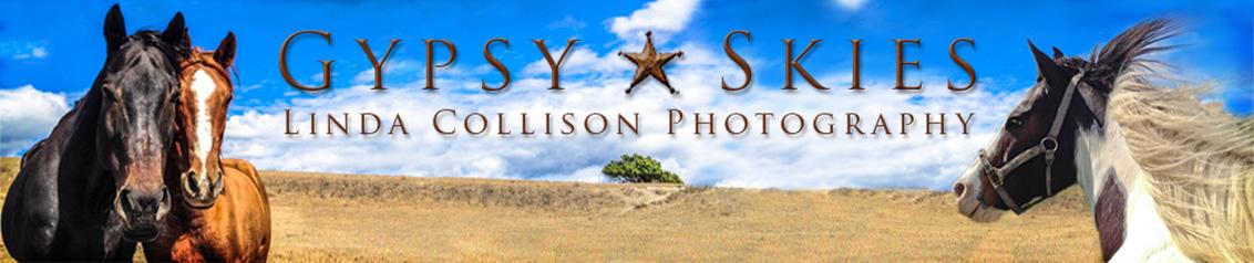 Gypsy Skies