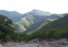Rescatan a grupo de migrantes en Sierra Múzquiz