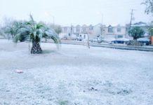 coahuila-podria-recibir-nevada-cam