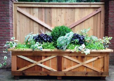 Planted Container Design