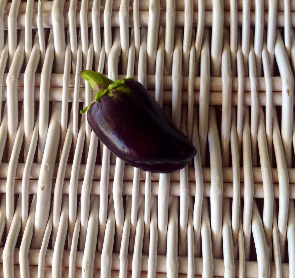 Pinot Noir Peppers