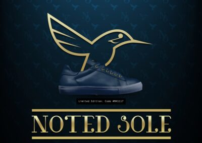 Blue Sole-shoes-banner