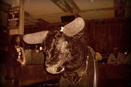 Johnny-bull-newyork-blog-voyage
