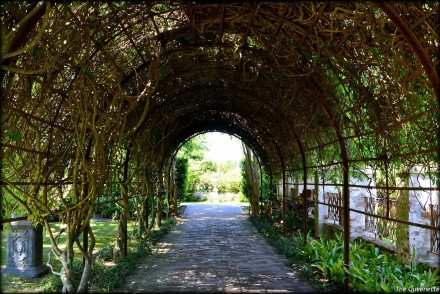 MyBigAppleCity_NewOrleans_Houmas_Travel-Blog-Louisiane