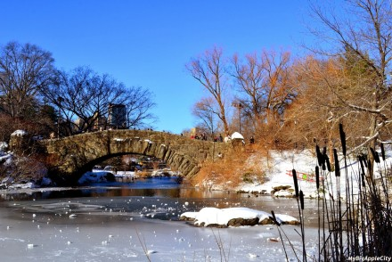 new-york-city-polar-vortex-6