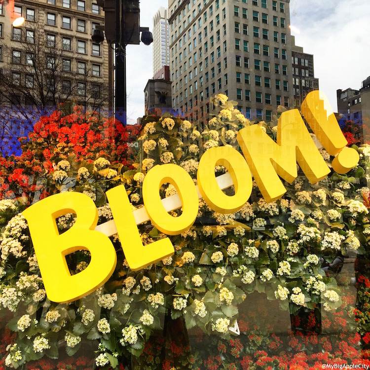 MyBigAppleCity-Macys-Flower-Show-NY-2015