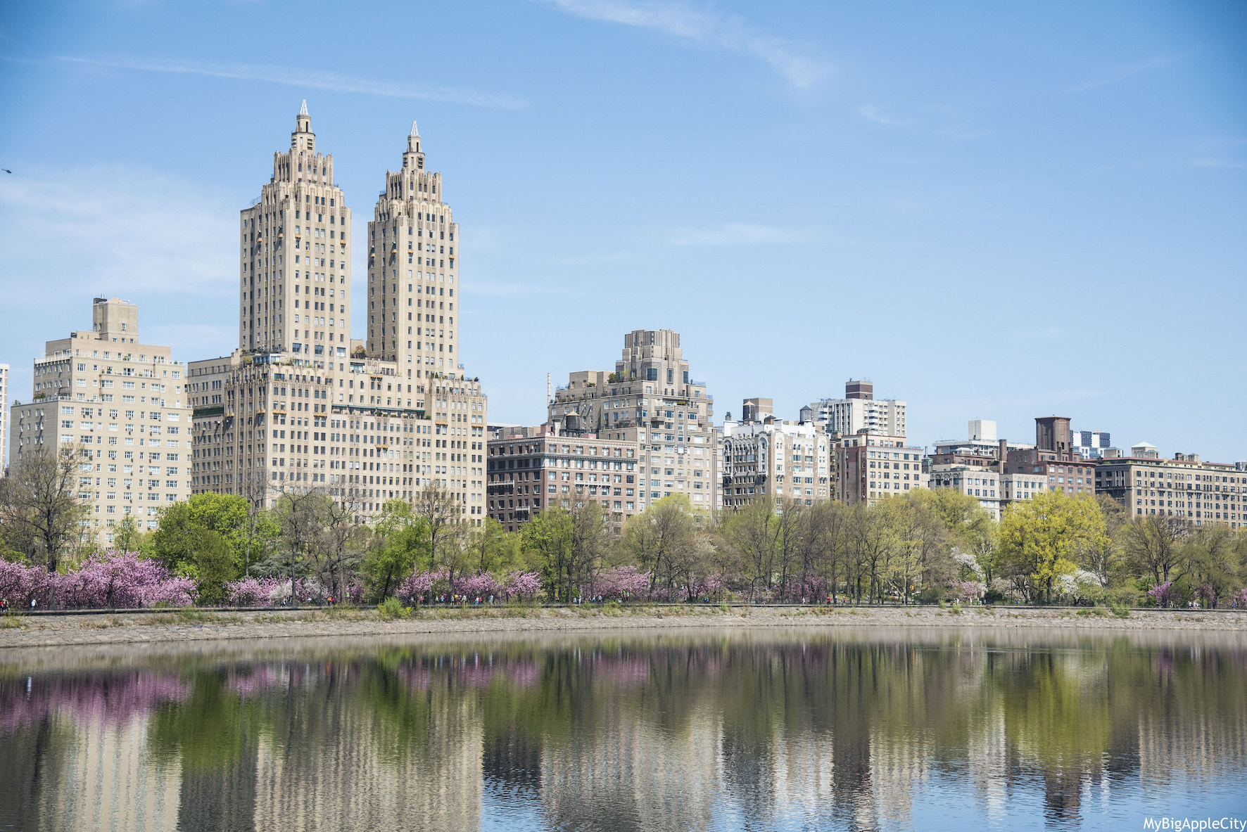 Central-Park-Cherry-blossom-spring-photography-NYC-Mybigapplecity