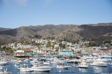 Catalina-Island-Travel-Blogger-USA-MyBigAppleCity