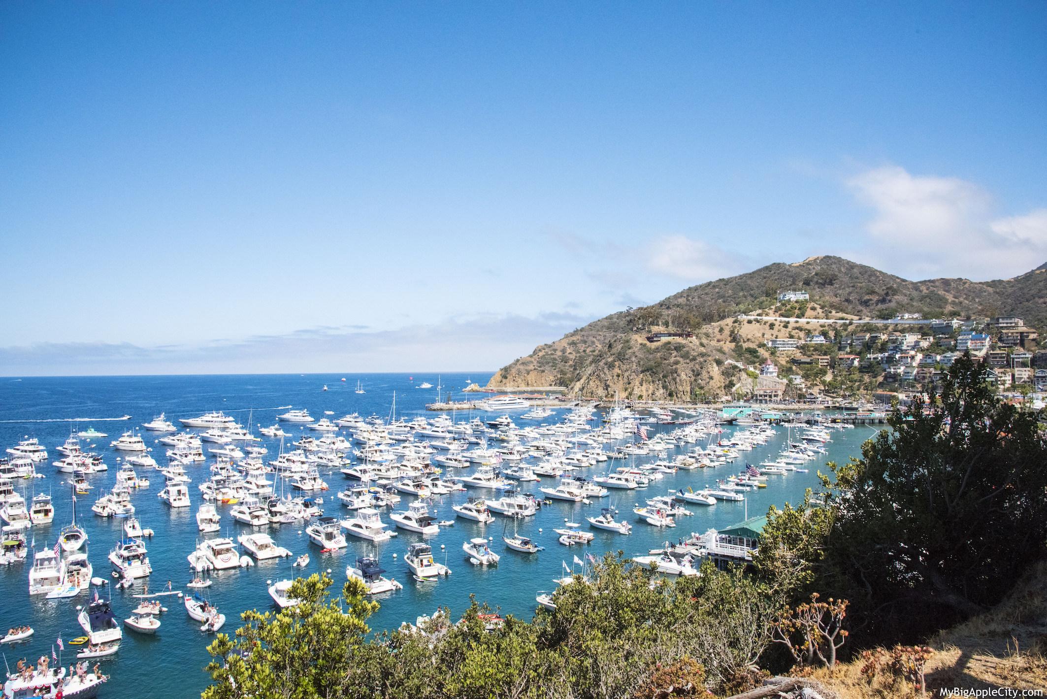 Visit-Catalina-Island-Day-trip-travelblog-summer-MyBigapplecity
