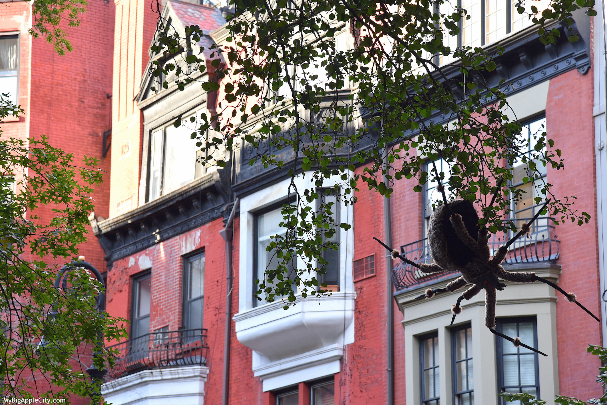 Spider-Halloween-NYC-2015-blog-lifestyle-voyageNew-York