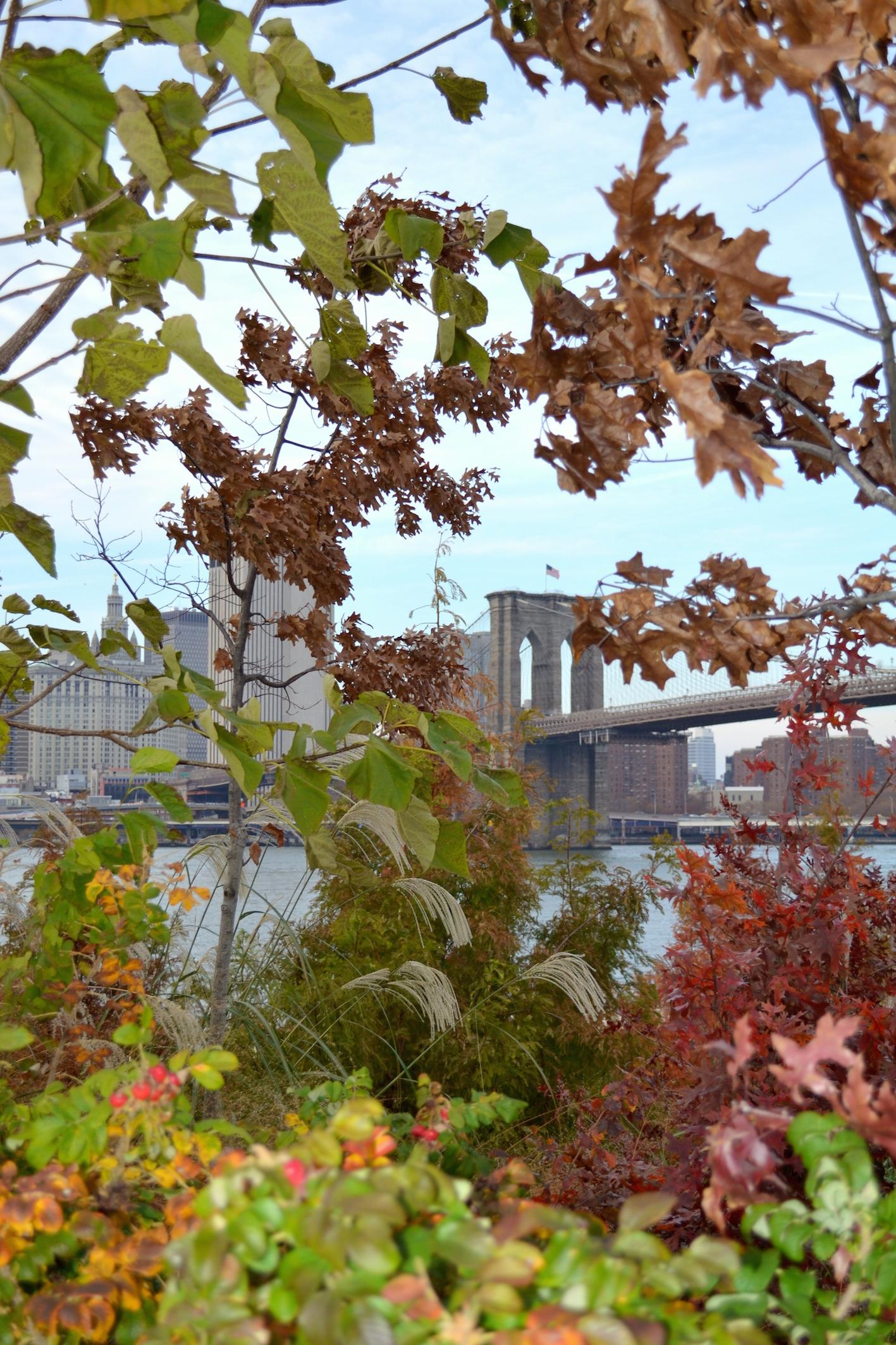 Brooklyn Bridge in the Fall, New York travel blog