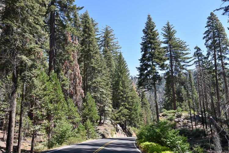 Visiter Yosemite National Park en Californie