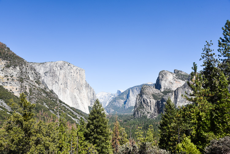 What to see in Yosemite National Park in California