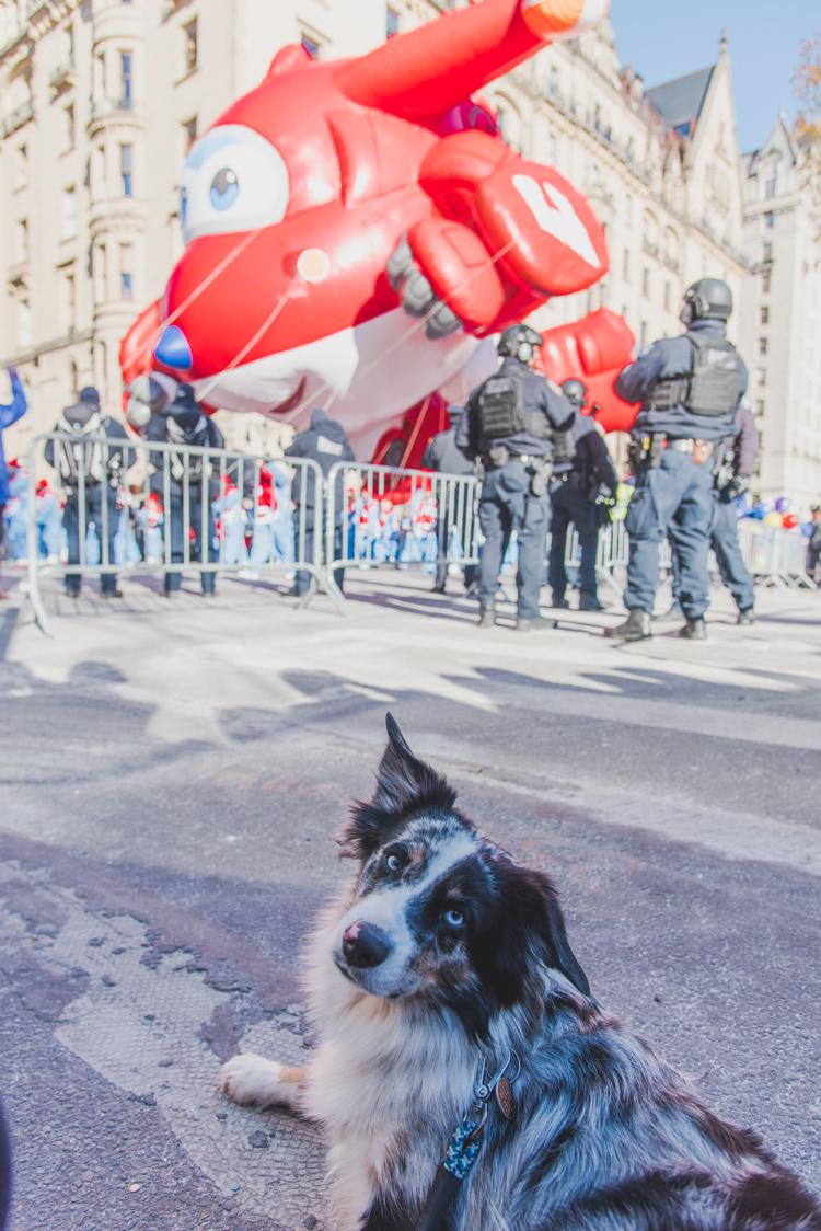 Happy Thanksgiving parade 2018 New York City
