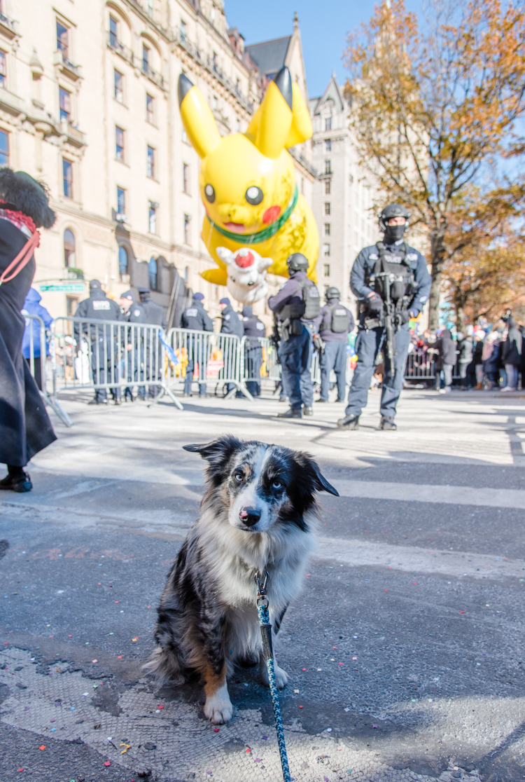 Macy's Thanksgiving parade 2018 New York City Harrison