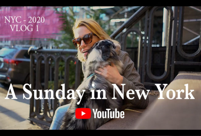 NYC Vlogger 2020 come with me in New York