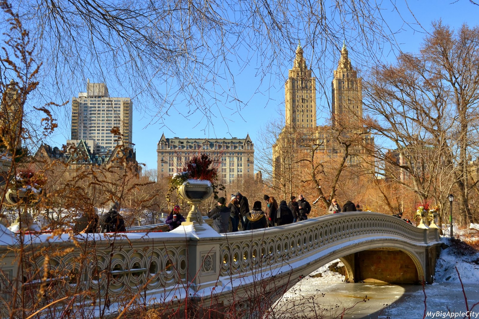 new-york-polar-vortex-cnetral-park-mybigapplecity