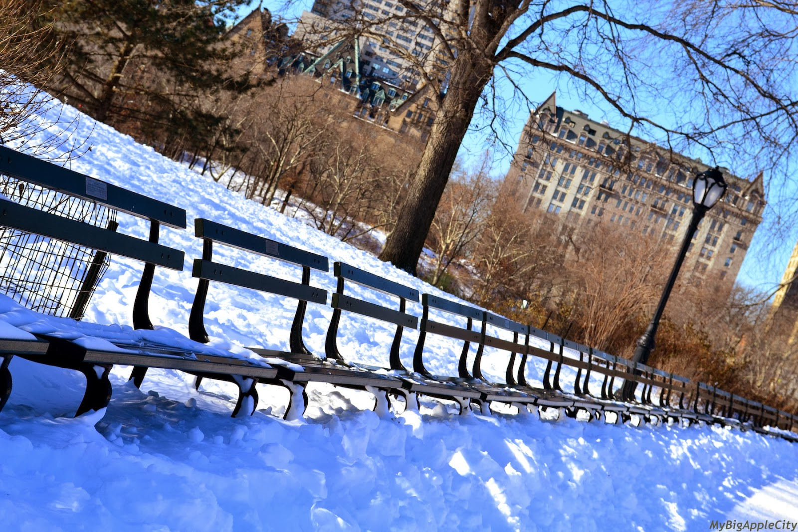 new-york-polar-vortex-centralpark-mybigapplecity