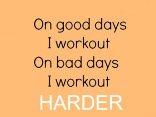 Fitness Motivational Quotes On Good Days I Workout, On Bad Days I Workout Harder