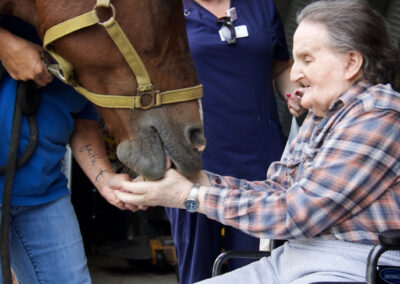 Gary of Three Rivers Hospice loved his day spent with the horses