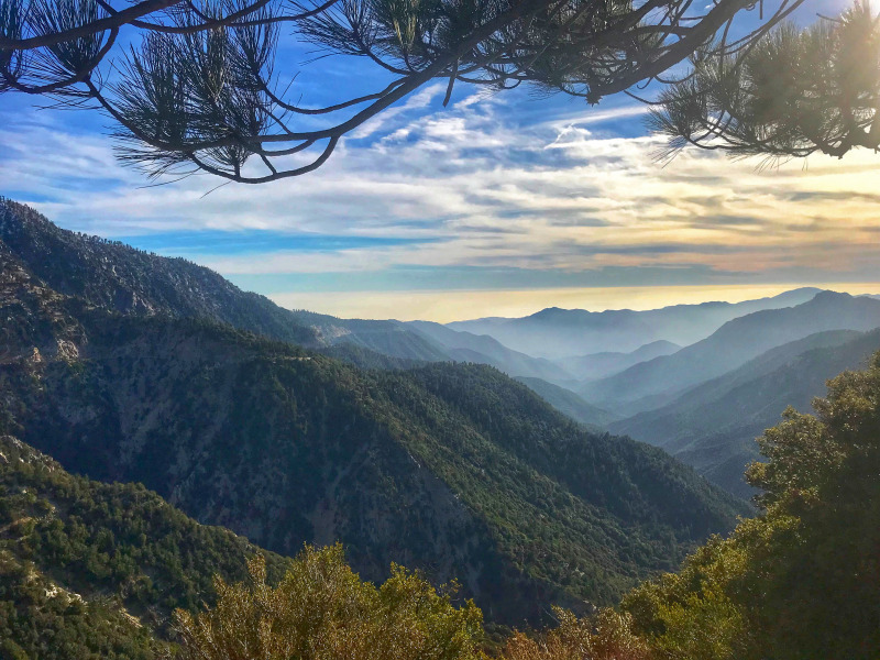 California - Los Angeles National Forest