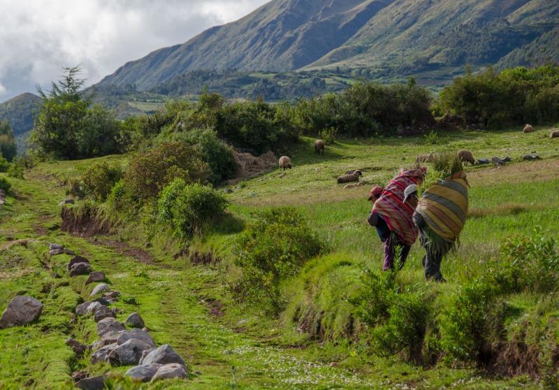 Peru - Quechua