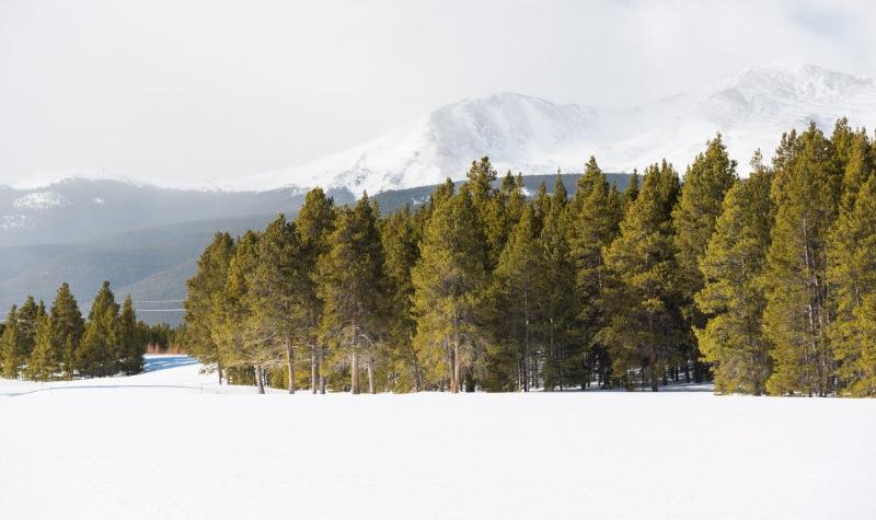 Colorado - Mt. Massive Golf course-3