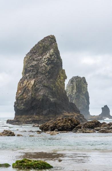 Oregon - Cannon Beach